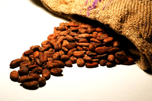 Amazonian Cocoa: Food for the Gods. A superfood with high energetic and nutritional value