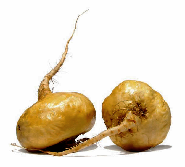 Maca: Properties and Contraindications...Natural multivitamin that promotes integral health to our body