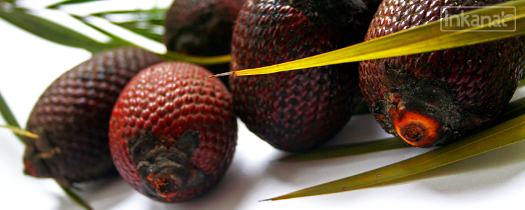 Aguaje or Buriti : Rich in phytoestrogens, improves and shapes your figure.