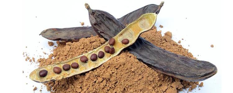 Propiedades y usos de la harina de algarroba