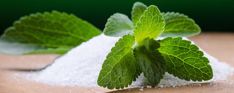 Resultado de imagen para stevia