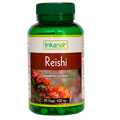 Reishi Capsules (90 x 400mg) - SPECIAL PRICE